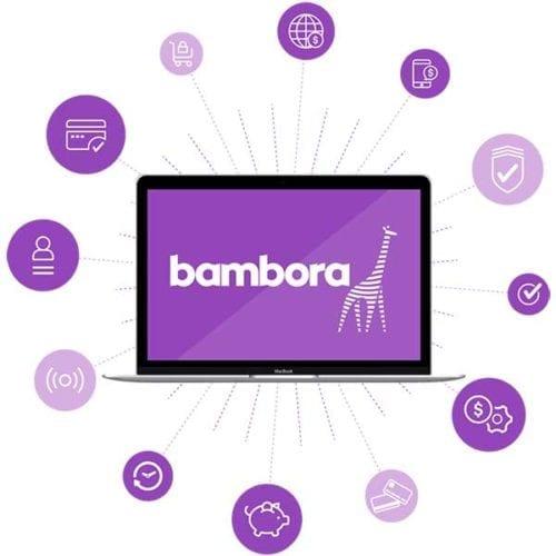 Bamboran maksupainikkeet verkkokauppaan 1
